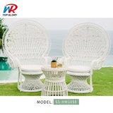 Hot Sale Modern Leisure Home Garden Sets Patio Rattan Chair Outdoor Furniture