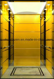 Good Quality 6 Person Passenger Elevator Lift with Good Price