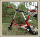 2013 CE Approved 6 Inch 8 Inch Folding A-Bike (CL-BF-A01)