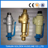 Spring Operated Safety Valve
