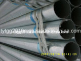 Carbon Steel Galvanized Pipe From Tianjin Manufacturer