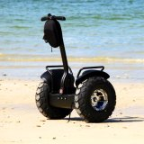 Ecorider Electric Chariot off Road Scooter