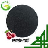 60% Organic Humic Acid Fertilizer for Agriculture
