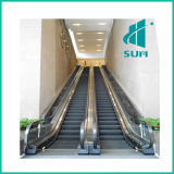 Outdoor Escalator with Good Quality Competitive Price Multi-Function Sum-Elevator