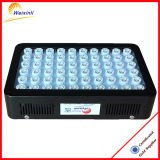 Promotion! Weixinli 300W LED Grow Light for Greenhouse