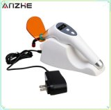 Good Price Dental Equipment 2 in 1 Dental Curing Light