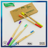 Customized Wooden Bamboo DuPont Bristles 4PCS Pack Toothbrush Manufacturer