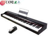 Portable Professional Weighted Keyboard MIDI Electronic Music Instrument 88 Keys Hammer Action China Smart Electric Digital Piano