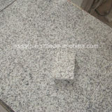 Granite Tile G655 for Wall and Flooring