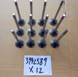 Intake and Exhaust Valves 3942589 3921444 3942588 3940734