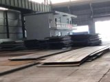 Professional New Global Popular Cheap Steel Plate Material Production Line