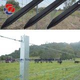 Galvanized/Black Painted Star Pickets Posts (Australian/NZ Style Y post)