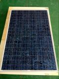 130W Colorful Poly Solar Module