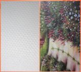 100% Polyester Waterproof Canvas for Inkjet Printing