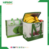 120GSM Non-Woven Cooler Bag with Lamination
