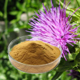 Chinese Factory Supply Milk Thistle Raw Material
