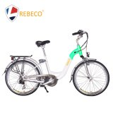 China Factory Wholesales Electric Bicycle
