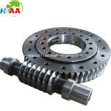 OEM High Precision Dual-Lead Worm Gear Pair for Transmission
