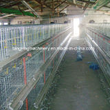 Good Price of Meat Broiler Chicken Cages for Poultry Farming