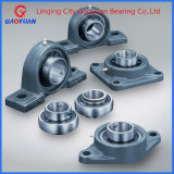 Housing Pillow Block Bearing (UCP202)
