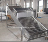 Roller Conveyor (Stainless Steel, High Quality)