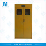 Lab Chemical Gas Cylinder Cabinet