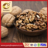 High Quality Walnut in Shell New Crop