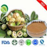Natural Garcinia Combogia Extract Hca Herbal Extract CAS: 90045-23-1
