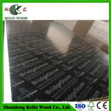 18mm Melamine Marine Plywood Cheap for Sale