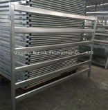 Galvanized Cattle Yard Fence with Low Price and Best Quality