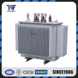 15kv Oil Immersed Distribution Transformer