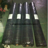 1-6m Width 75g/80g/90g/100g Polypropelene Woven Fabric PP Ground Cover Suppy by Sincere Factory Price