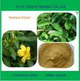 High Quality Natural Damiana Extract Powder