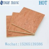 Bintangor Commercial Plywood Cheap Plywood for Furniture