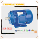 Three Phase Low Voltage AC Induction Motor 220V 50Hz 45kw