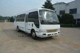 7.5 M 29-31 Seats LHD Drive Brandy New Mini Bus with Cumins Diesel Engine