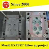 Plastic Mould for Plastic Gear