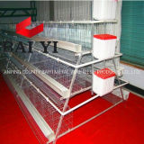Best Sale Chicken Egg Layer Cages in South Africa Price