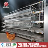 Poultry Farming Equipment Tools and Uses Laying Hens