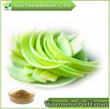 Watermelon Peel / Watermelon Rind Extract 10: 1, Powder