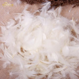 Home Textile 80/20 Down Feather Pillow Inner Filling Hot Sale