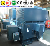 710kw Explosion Proof Three Phase Asynchronous Permanent Magnet Electric AC DC Motor