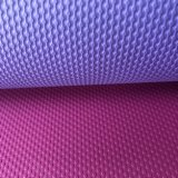 Suppliers Wholesale TPE Yoga Mat Non Toxic Eco Yoga Mat