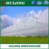 2020 Multi Span Large Film Production /Plastic Sheet/Cheap Solar Greenhouse Materials