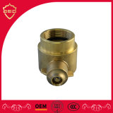2.5 Inch Brass Female British Instantaneous Adapter