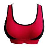 Wholesale Cheap Women Seamless Yoga Wear