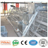 Best Price Chicken Coop Pullet Chicken Cage