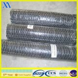 Stainless Steel Wire Hexagonal Wire Netting (XA-HM436)