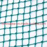Green Color Double Braided Rope Fishing Nets for Fishing Tackles