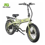20inch Folding Bicycle Electric Bike Fat Tire with 36V 350W Rear Drive Motor China